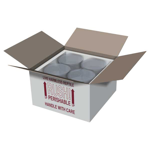 11x11x7 Insulated Shipping Box with 3/4 Foam - 5 pack IB11x11x75PK